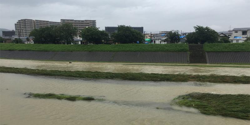 7月7日の安威川の様子