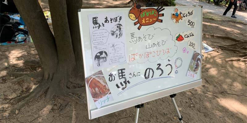 茨木市で乗馬体験