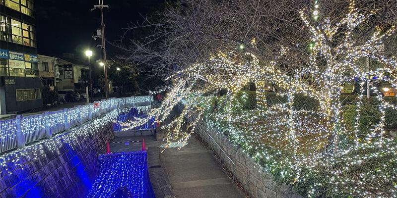 いばらきイルミフェスタ灯の元茨木川緑地のイルミネーション01