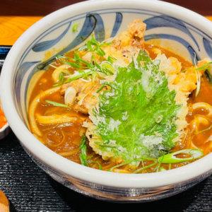 茨木市『釜あげ饂飩 唐庵』ボリューム感あるおいしいカレーうどんが食べられる名店
